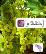 002_Link_Corredor_de_La_Producción.jpg