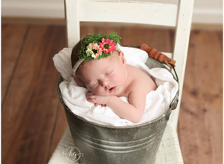Raeyla | Hayley Gibbs Photography | Alabama Newborn Photographer