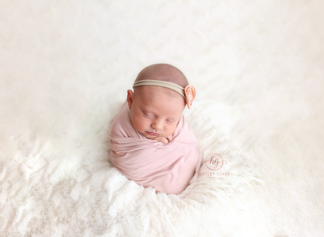 Best of 2017 | Newborns | Hayley Gibbs Photography