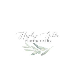 2019 and The Olive Tree | Hayley Gibbs Photography