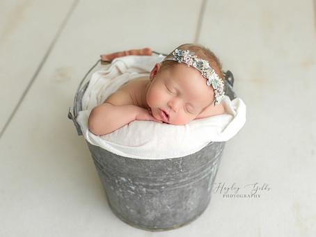August Brown | Newborn Photographer | Hayley Gibbs Photography | Snead Alabama Photographer