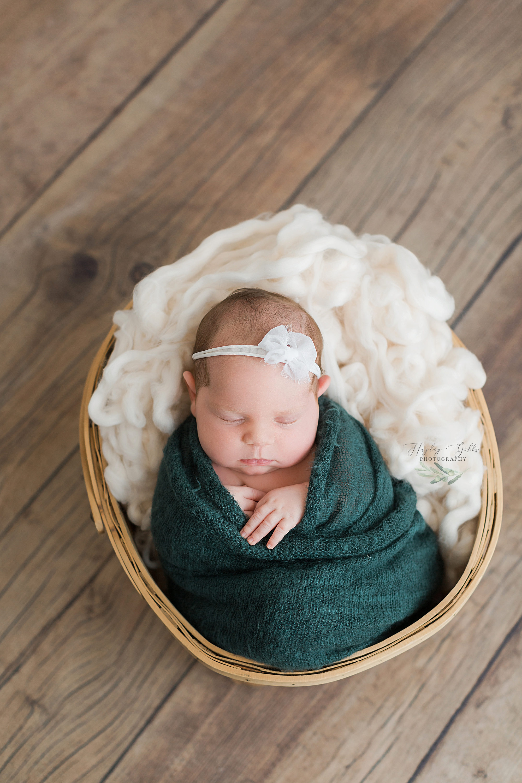 Hayley Gibbs Photography, Snead Alabama Photographer, Newborn Photographer, Oneonta Alabama Newborn Photographer, Oneonta Alabama Photographer, Newborn Photography, Snead Alabama, Professional Newborn Photography, Best Newborn Photographer