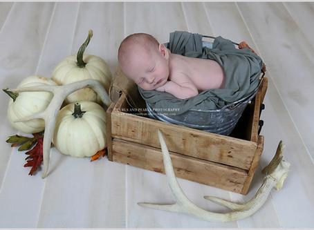 Cason Jack | North Alabama Newborn Photographer | Curls and Pearls Photography
