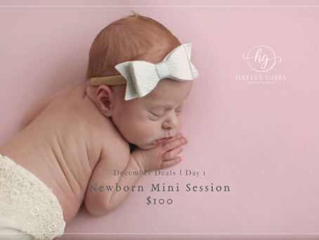 December Deal Days | Day 1! Newborn Mini Session for $100