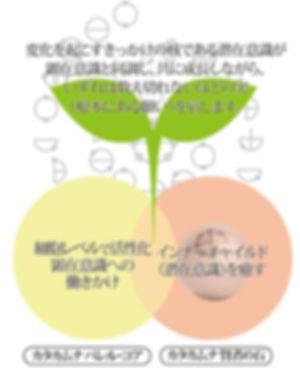 賢者の石-05.jpg