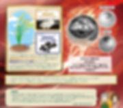 カタカムナ-29.jpg