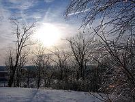 Ice Storm in Late Light, Green Hill Park, Worcester, Massachusetts