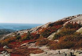 Fall at Acadia National Seashore Maine