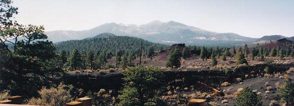 eruption, charred Landscape, ponderosa pines, colorful