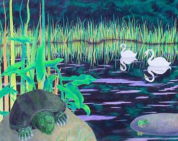 snapping turtle, swans, frog, reflections, colored pencl