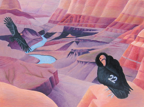 california condors Hope Soars (Grand Canyon National Park, Arizona) by Worcester Cultural Commission Grant