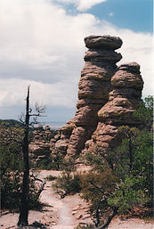 Tall and Dry, Chiricahua National Monument, Arizona, rock formation, pine