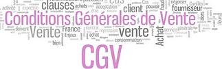 cgv.png