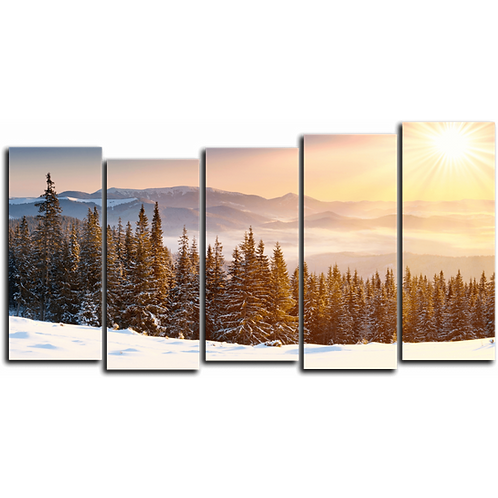 «Сибирское солнце»
