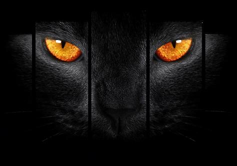 «Огненный взгляд»