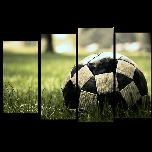 «Мяч на траве»