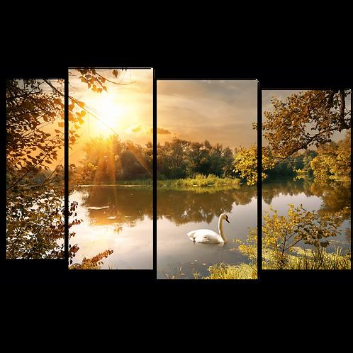 «Лебедь на пруду»