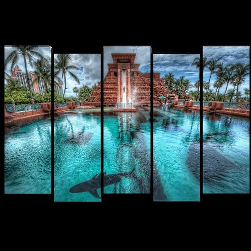 «Дом для водоплавающих»