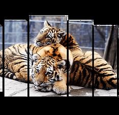 «Амурские тигрята»