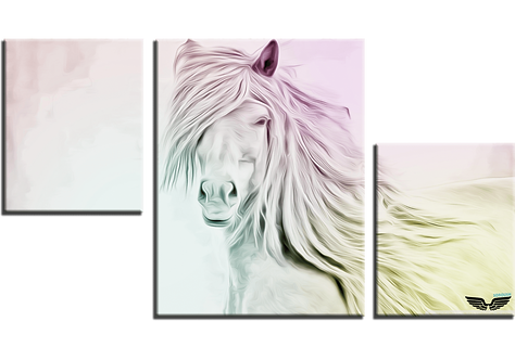 «Белогривая красавица»