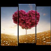 «Сердце полей»