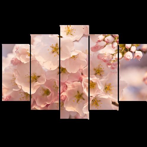 «Яблони в цвету»