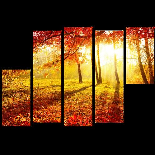 «Янтарная осень»