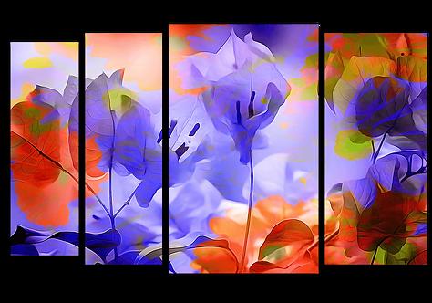 «Разноцветный луг»