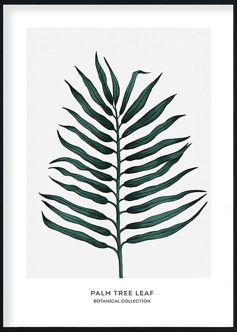 Ветвь Пальмы