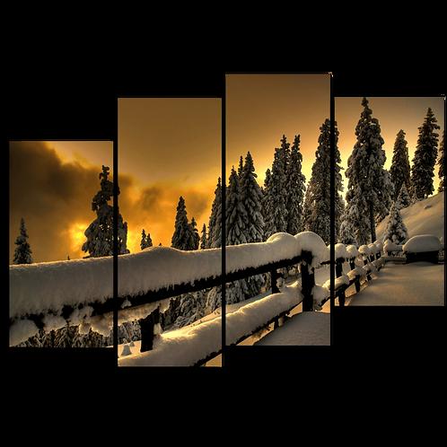«Зимняя смотровая»