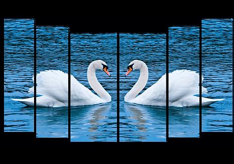 «Отражение верности»
