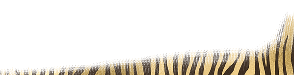 Home page banner copy 2.png