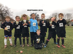 the mustangs 2_edited