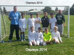 Ospreys_edited_edited