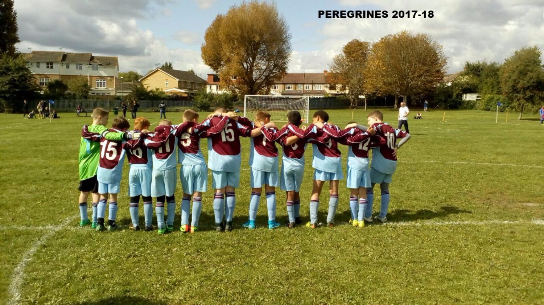 Peregrines 2017-18_edited