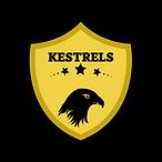KESTRELS2.png