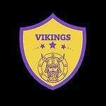 VIKINGS2.png