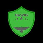 HAWKS2.png