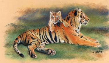 Tiger cub pastel.jpg