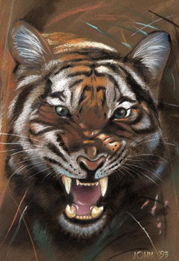 Tiger pastel.jpg