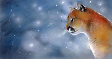 cougar pastel.jpg