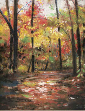 woodland walklow.jpg