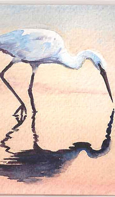 Watercolours from