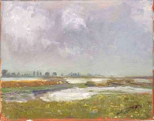 River Roach View
