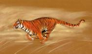 tiger running pastel.jpg