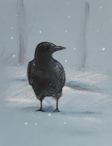 Michigan Crow