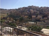 Relatos desde Israel Semana 3