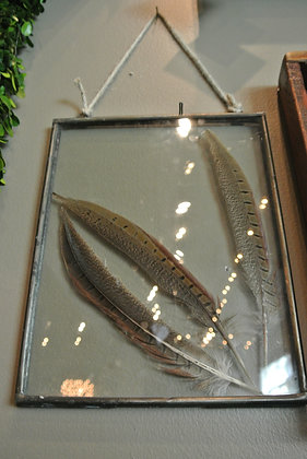 Feathers in Medium Clear Frame