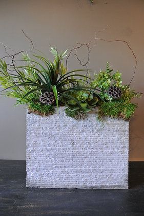 Succulents & Plants in Tall White Vase