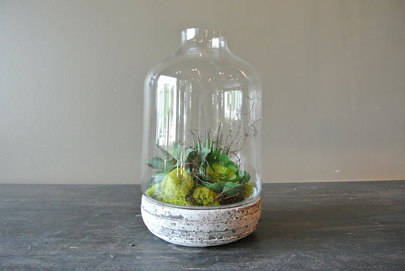 Circular Terrarium with Faux